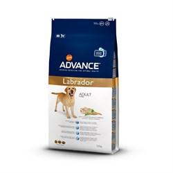 Advance - Сухой корм для лабрадоров - фото 6484
