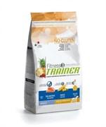 Trainer - Сухой корм для взрослых собак средних и крупных пород (с лососем и кукурузой) Fitness No Gluten Medium/Maxi Adult Salmon and Maize