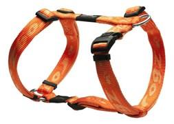 Rogz - Шлейка, оранжевый (размер S (23-37 см), ширина 1,1 см) ALPINIST H-HARNESS