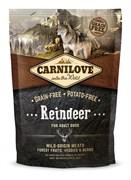CarniLove - Сухой беззерновой корм для взрослых собак всех пород (северный олень) Adult Reindeer