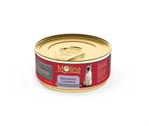 """Molina - Консервы для кошек """"Цыпленок с папайей в соусе"""""""
