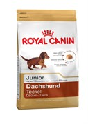 Royal Canin - Сухой корм для юниоров породы такса