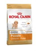 Royal Canin - Сухой корм для юниоров породы пудель Junior Poodle