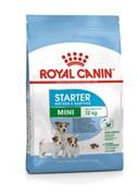 Royal Canin - Сухой корм для щенков мелких и миниатюрных пород MINI STARTER