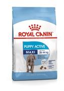 Royal Canin - Сухой для юниоров крупных пород с повышенной активностью MAXI JUNIOR ACTIVE