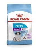 Royal Canin - Сухой корм для щенков гигантских пород (от 2-х месяцев) GIANT PUPPY