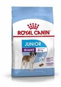 Royal Canin - Сухой корм для юниоров гигантских пород GIANT JUNIOR