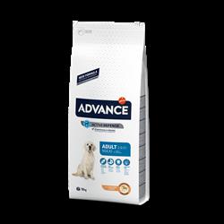 Advance - Сухой корм для взрослых собак крупных пород (с курицей и рисом) Maxi Adult - фото 14562
