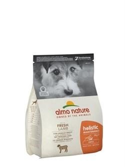 Almo Nature - Сухой корм для взрослых собак малых пород (с ягненком) Small & Lamb Holistic - фото 17304