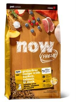 NOW Natural Holistic - Сухой корм беззерновой для щенков (с индейкой, уткой и овощами) Fresh Puppy Recipe Grain Free - фото 18262
