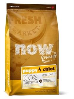 NOW Natural Holistic - Сухой корм беззерновой для щенков (с индейкой, уткой и овощами) Fresh Puppy Recipe Grain Free - фото 5015