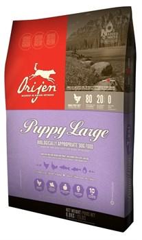 Orijen - Сухой беззерновой корм для щенков крупных пород Puppy Large - фото 5038