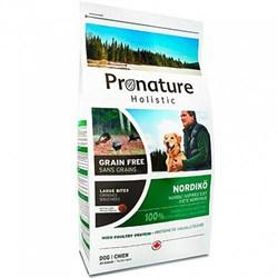 Pronature Holistic GF - Сухой корм для собак Нордико (крупные гранулы) - фото 6131