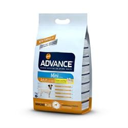 Advance - Сухой корм для взрослых собак малых пород (с курицей и рисом) Mini Adult - фото 6490