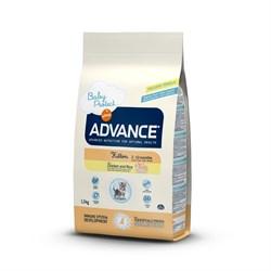 Advance - Сухой корм для котят от 2 до 12 мес. Baby Protect Kitten - фото 6507