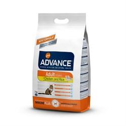 Advance - Сухой корм для взрослых кошек (с курицей и рисом) Adult - фото 6510