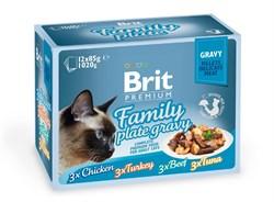 """Brit - Набор паучей кусочки в соусе для кошек """"Семейная тарелка"""" (12 шт*85 г) Family Plate Gravy - фото 8850"""
