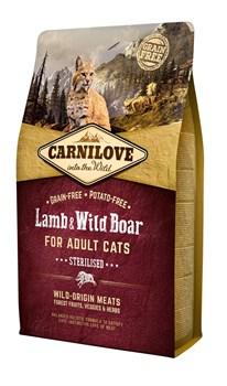 CarniLove - Сухой корм для кастрированных котов (ягненок и дикий кабан) Adult Sterilised Lamb & Wild Boar - фото 8877