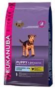 Eukanuba - Сухой корм для щенков крупных пород (курица) Dog Puppy & Junior Large Breed