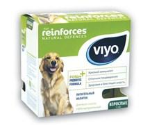 VIYO - Пребиотический напиток для взрослых собак Reinforces Dog Adult