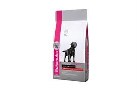 Eukanuba - Сухой корм для лабрадоров Dog DNA