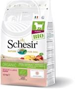 Schesir Bio - Сухой корм для щенков средних и крупных пород (домашняя птица)