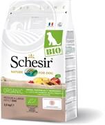 Schesir Bio - Сухой корм для собак средних и крупных пород (домашняя птица)