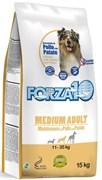 Forza10 - Сухой корм для взрослых собак средних пород (с курицей и картофелем) Medium Adult Maintenance 24/12