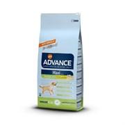 Advance - Сухой корм для щенков крупных пород (12-24 мес) Maxi Junior