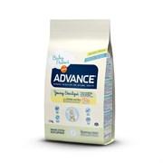 Advance - Сухой корм для стерилизованных кошек до 2 лет Young Sterilized
