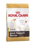 Royal Canin - Сухой корм для взрослых собак породы джек-рассел-терьер