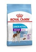 Royal Canin - Сухой для юниоров гигантских пород с повышенной активностью GIANT JUNIOR ACTIVE