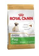 Royal Canin - Сухой корм для юниоров породы Мопс