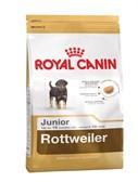 Royal Canin - Сухой корм для юниоров породы ротвейлер