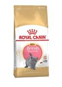 Royal Canin - Сухой корм для котят британской породы Kitten British Shorthair