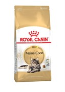 Royal Canin - Сухой корм для взрослых кошек породы мейн-кун Adult Maine Coon