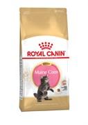 Royal Canin - Сухой корм для котят породы мейн-кун Kitten Maine Coon
