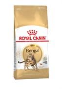 Royal Canin - Сухой корм для взрослых кошек бенгальской породы BENGAL ADULT