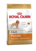 Royal Canin - Сухой корм для собак породы пудель Adult